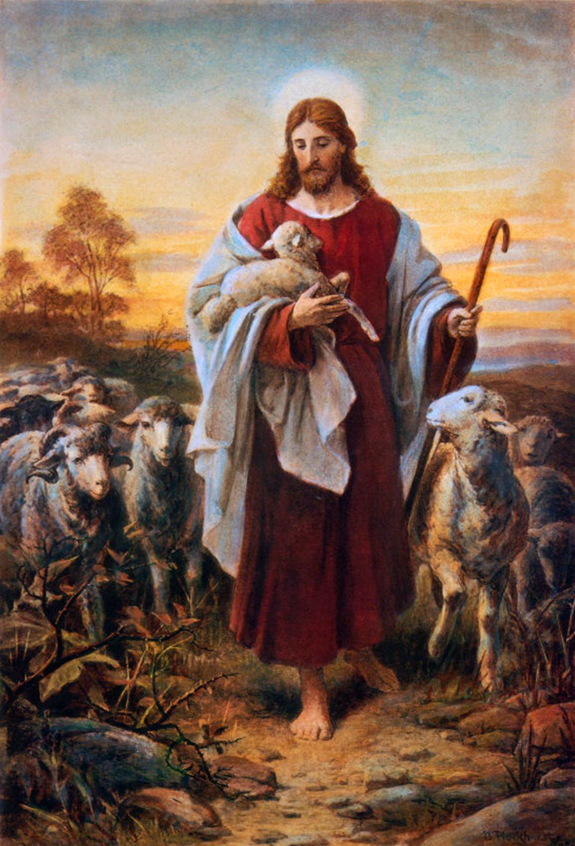 Ode to the Shepherd's Conference