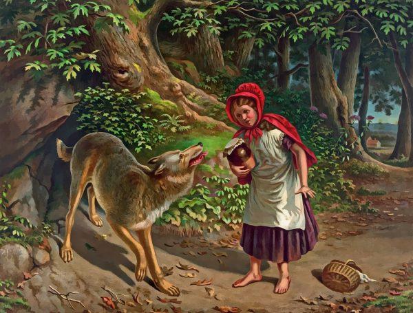 Wolf - Little Red Ridding Hood